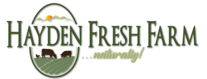 hayden-fresh-logo-stacked-02